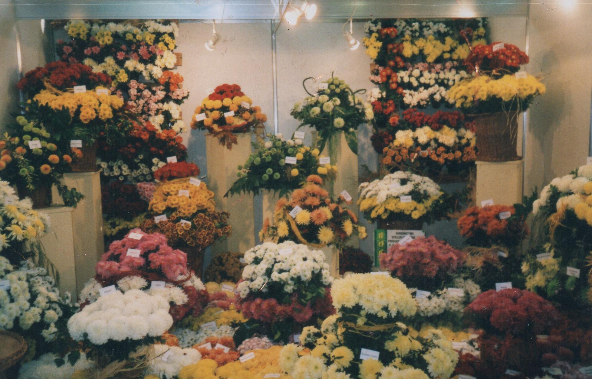 KWO Polagra 2005